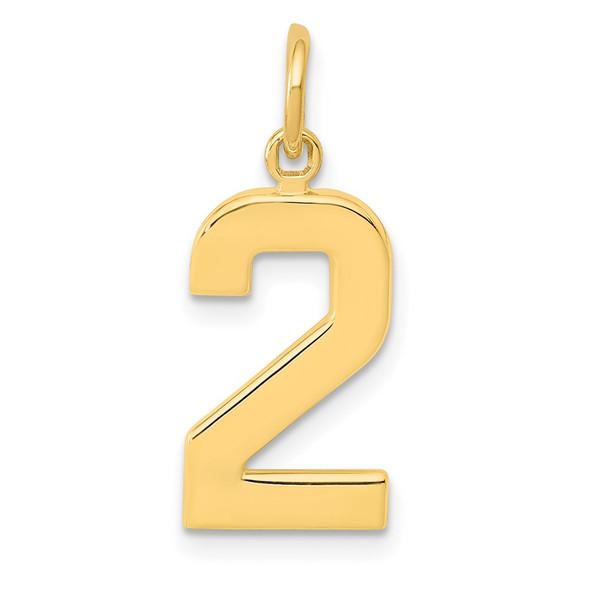 14k Yellow Gold Casted Medium Polished Number 2 Pendant
