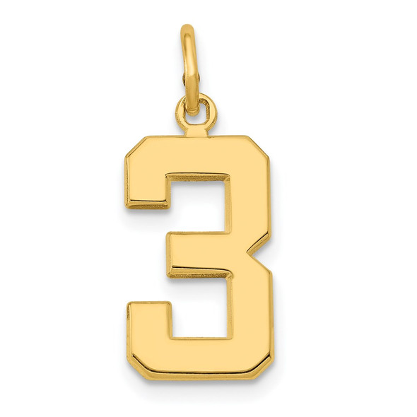 14k Yellow Gold Casted Medium Polished Number 3 Pendant