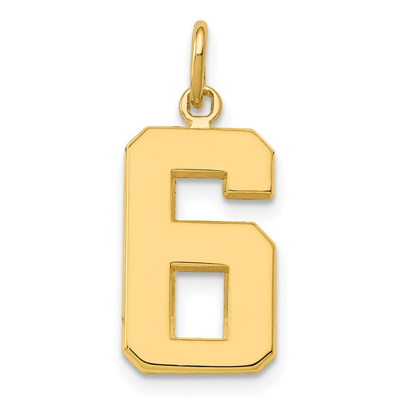 14k Yellow Gold Casted Medium Polished Number 6 Pendant