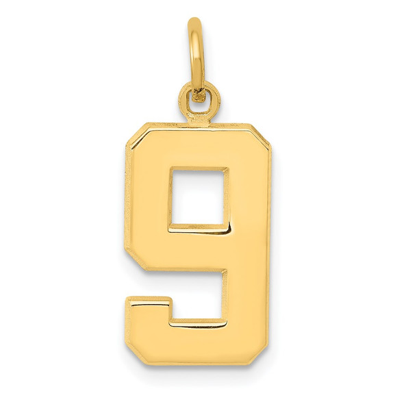 14k Yellow Gold Casted Medium Polished Number 9 Pendant
