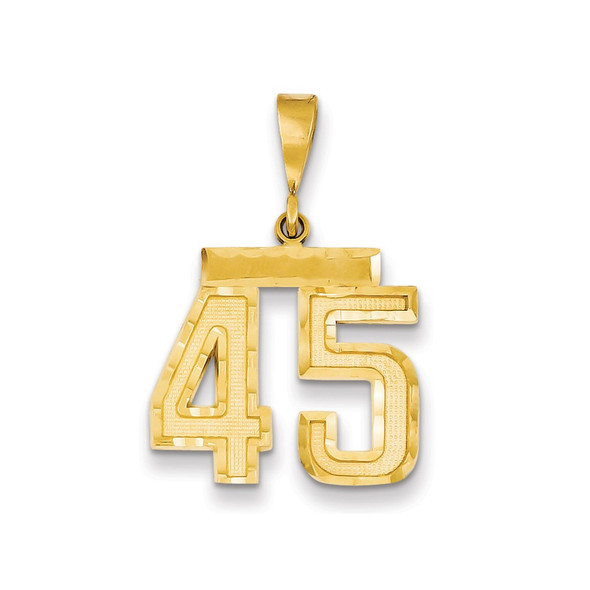 14k Yellow Gold Medium Diamond-Cut Number 45 Charm