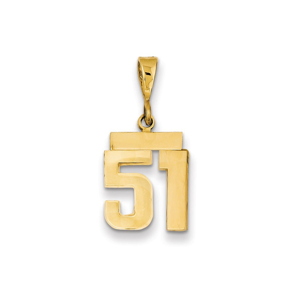 14k Yellow Gold Small Polished Number 51 Charm SP51