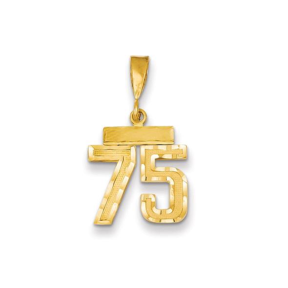 14k Yellow Gold Small Diamond-Cut Number 75 Charm