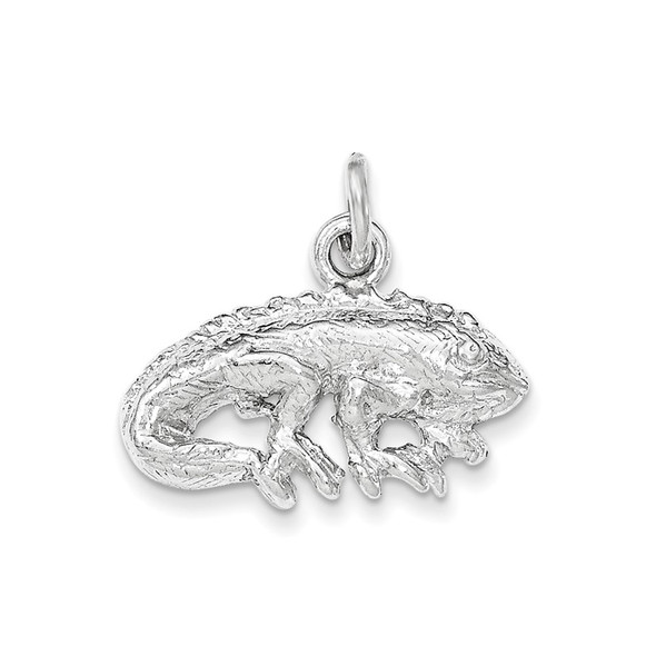 Sterling Silver Polished and Textured Iguana Charm