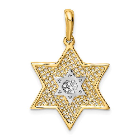 14k Yellow Gold With Rhodium Solid Polished Meshed Star Of David Charm