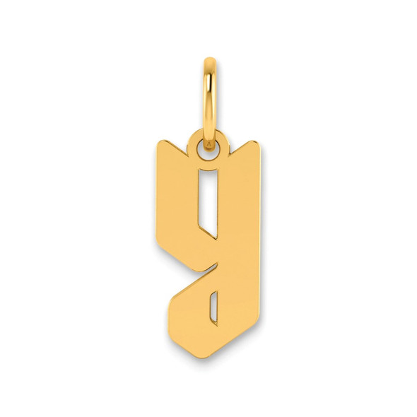 14k Yellow Gold Lowercase Letter Y Initial Charm XNA1383Y/Y