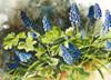 Blue bells flower note card