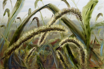 A close up view of fuzzy foxtails painted in oil on canvas by Julia Swartz