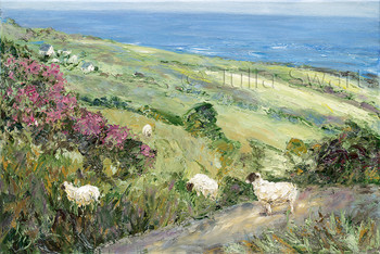 A typical Irish countryside of sheep on the road and in the meadows with clumps of heather all around by Julia Swartz