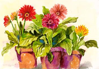 Gerbera Daisies watercolor paintings in clay pots by Julia Swartz