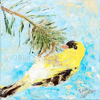 An impressionistic close up oil painting of a Goldfinch by Julia Swartz Lancaster PA