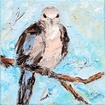 An impressionistic close up oil painting of a Mourning Dove by Julia Swartz Lancaster PA