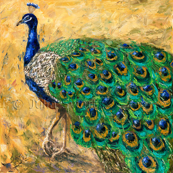 An impressionistic close up oil painting of a Peacock and all his bright feathers by Julia Swartz.