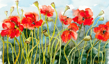 An Original Watercolor paintings of red poppies by Julia Swartz, Lancaster PA.