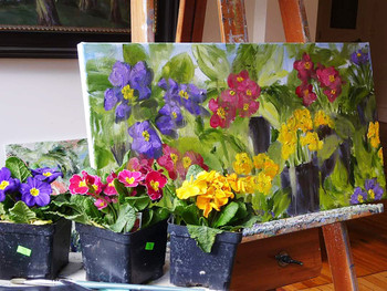 primrose in pots and the painting