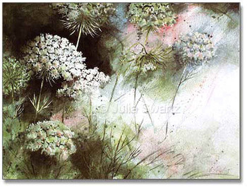 A light and airy watercolor painting of Queen Anne's Lace by Julia Swartz