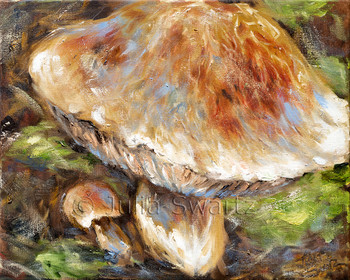 a close up view of mushrooms painted with oil on canvas by Julia Swartz.