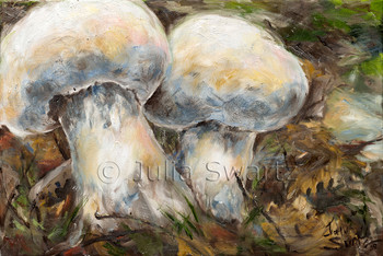 A close up still life oil painting of two small mushrooms by Julia Swartz