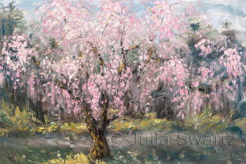 An impressionistic oil painting of a blooming Weeping Cherry Tree by Julia Swartz, Lancaster PA