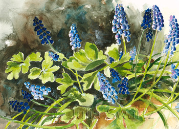 Blue bells flower note card