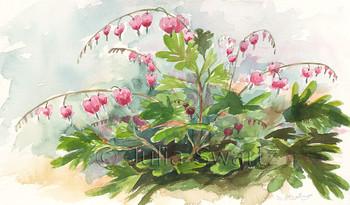 A watercolor paintings of Bleeding Hearts flowers by artist Julia Swartz