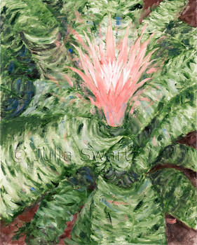 An Oil painting of a Bromeliad Flower by Julia Swartz Lancaster PA