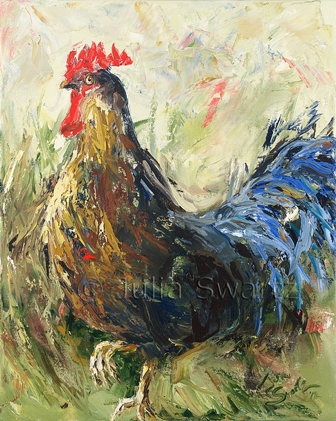 An Original Oil paintings on canvas of a Rooster by Julia Swartz.