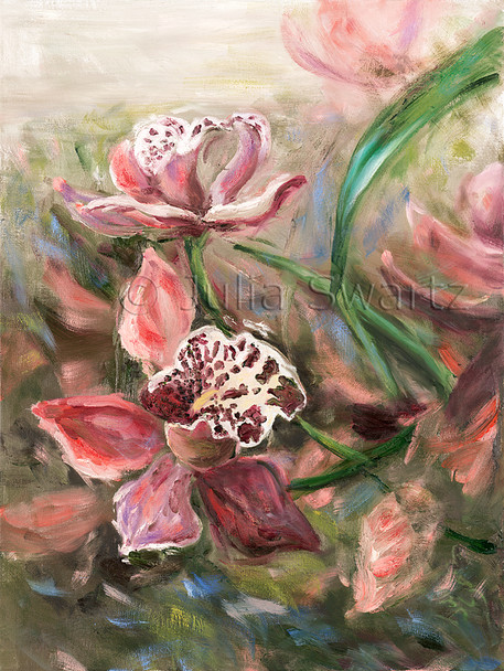 An oil painting of a pink Cymbidium orchid flower by Julia Swartz.