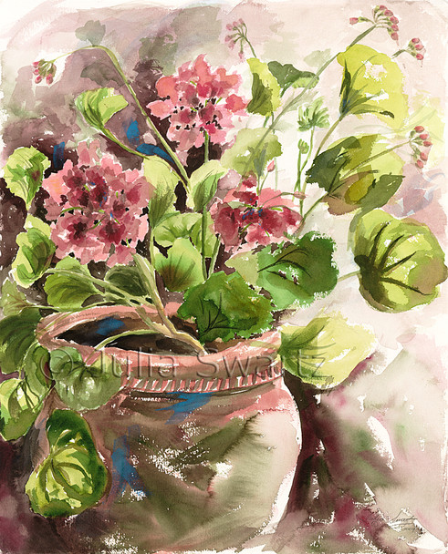 A watercolor painting of Geranium Flowers in a clay pot by Julia Swartz.