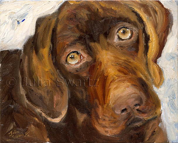 This oil painting depicts Gideon the chocolate lab, the first of many portraits of the lovable dog.