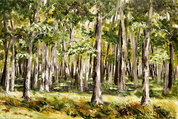 Julia has again painted a serene scene from one of her favorite places in Northern Pennsylvania, where her family has vacationed since her children were small. The beautiful sunlight shining through the leaves and onto the tree trunks portrays a serene mood to the viewer, inviting us into the coolness of the pale green forest.