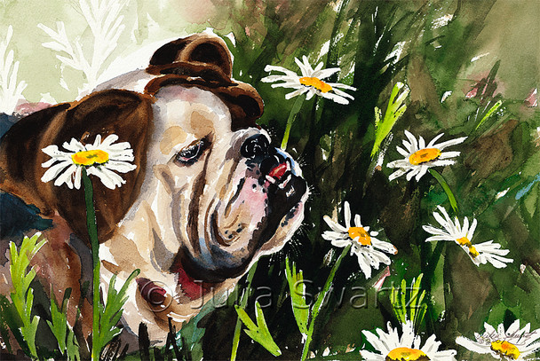 A watercolor painting of a bulldog surrounded by daisies