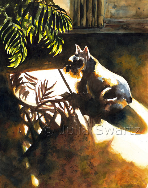 A watercolor painting of a miniature schnauzer lying in the sun by Julia Swartz