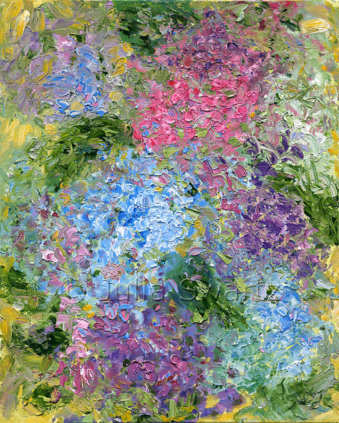 An impressionistic oil painting of Hydrangeas, version III, by Julia Swartz, Lancaster PA.