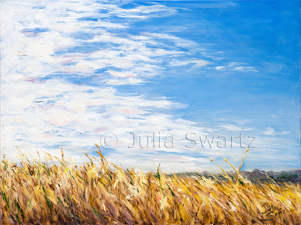 A beautiful oil painting of golden ripe wheat fields against a blue sky with white clouds by Julia Swartz.