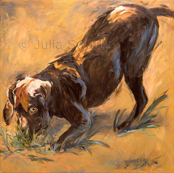An oil painting on canvas of a chocolate lab by Julia Swartz.