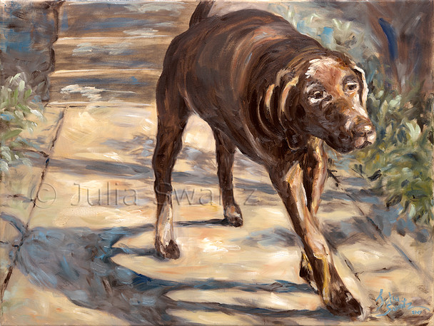 An oil painting of Gideon, a chocolate lab going for a walk by Julia Swartz.