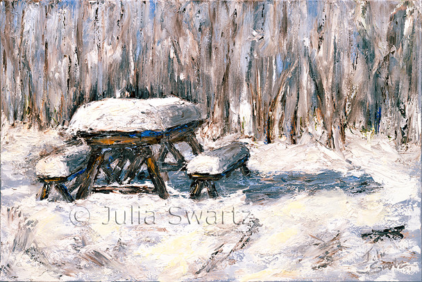 On a peaceful walk in the woods after a snow storm, Julia came upon this old picnic table with nine inches of snow piled up on it.