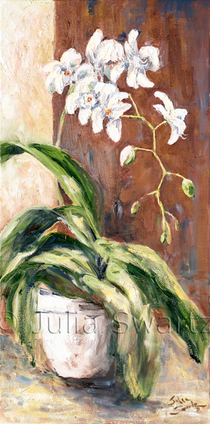 An oil painting of a white Phalaenopsis orchid by Julia Swartz lancaster PA