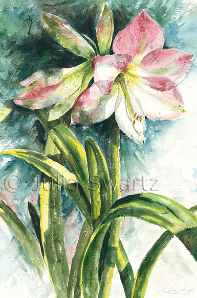 Pink Amaryllis flowers painted with watercolor by Julia Swartz
