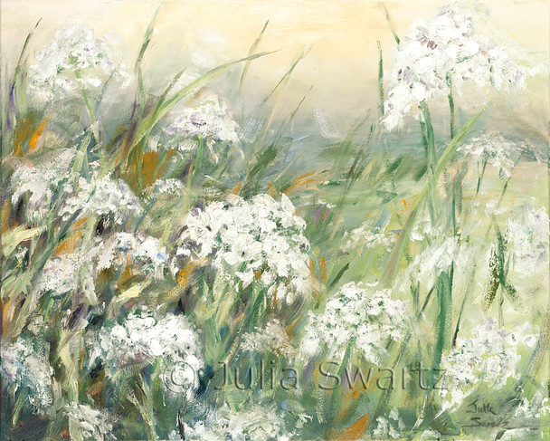 An impressionist oil painting of Queen Anne's Lace in a field by Julia Swartz Lancaster PA.
