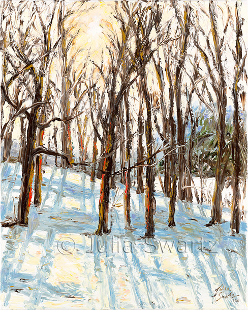 In this oil painting Julia has been able to capture the way the sun penetrates through the trees in the early winter mornings as she looks out her back window.
