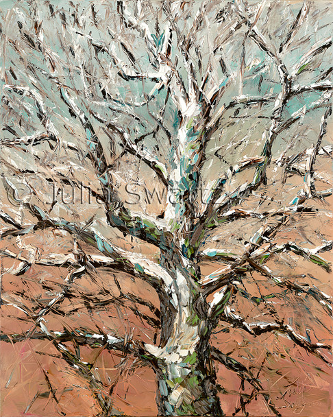 A Sycamore tree painting in oil on canvas by Julia Swartz.