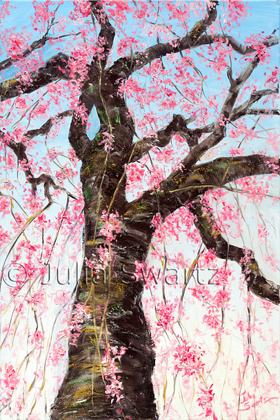 A tall wispy Weeping Cherry tree in bloom painting from the ground looking almost straight up into the blue sky by Julia Swartz.