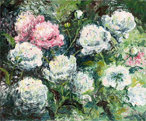 A white Peonies flower oil painting on canvas by artist Julia Swartz.