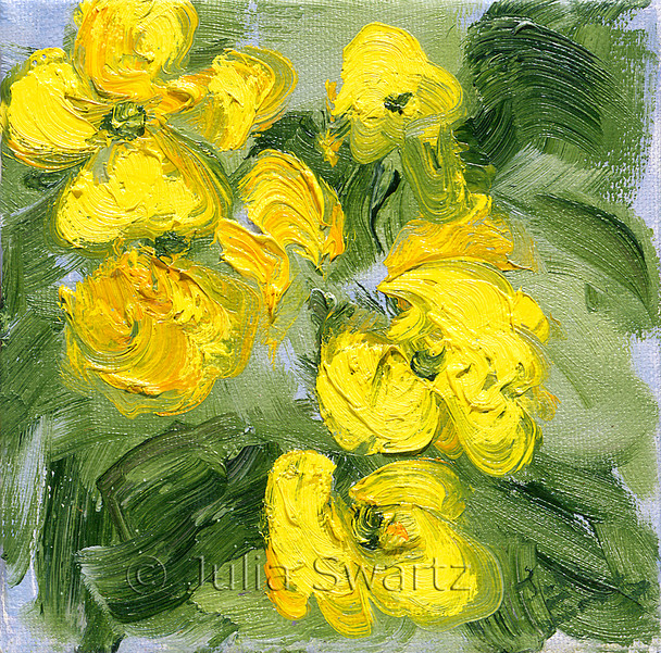 A close up impressionism oil painting of Yellow Primrose by Julia Swartz Lancaster PA