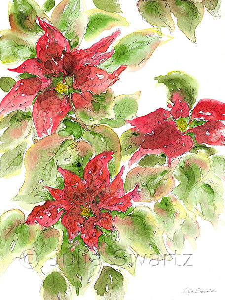 A watercolor painting on canvas of three Poinsettias by artist Julia Swartz.