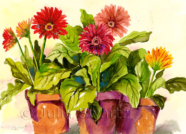 Gerbera Daises note cards