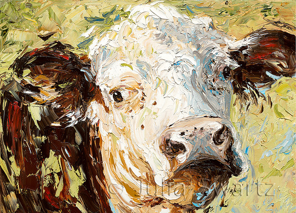 Note card of a Hereford cow