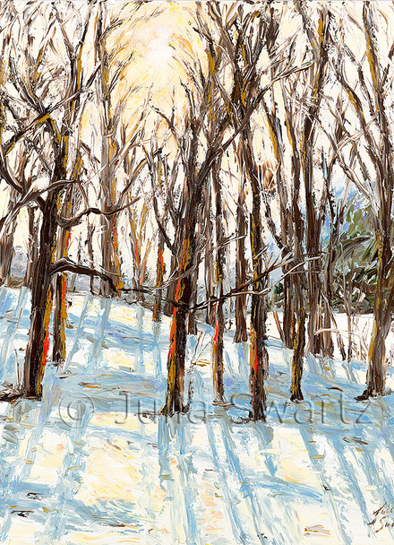 Morning sun shining through the trees in the winter with snow on the ground